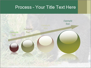 0000071927 PowerPoint Template - Slide 87