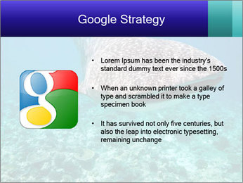 0000071931 PowerPoint Templates - Slide 10