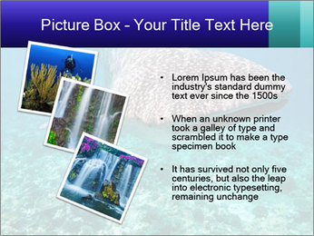 0000071931 PowerPoint Template - Slide 17
