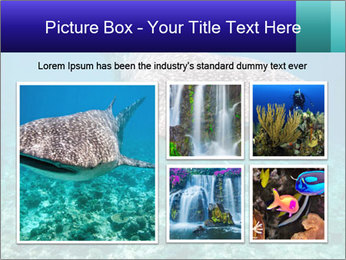 0000071931 PowerPoint Template - Slide 19