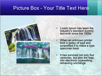 0000071931 PowerPoint Templates - Slide 20