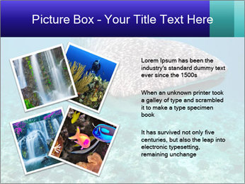 0000071931 PowerPoint Template - Slide 23