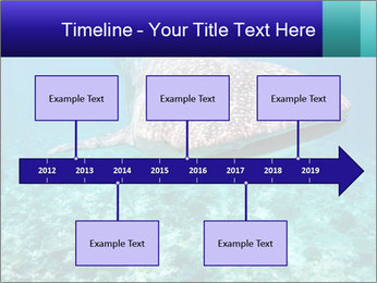 0000071931 PowerPoint Templates - Slide 28