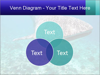 0000071931 PowerPoint Templates - Slide 33