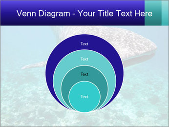 0000071931 PowerPoint Template - Slide 34
