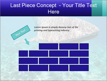 0000071931 PowerPoint Template - Slide 46