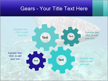 0000071931 PowerPoint Template - Slide 47