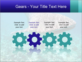 0000071931 PowerPoint Templates - Slide 48