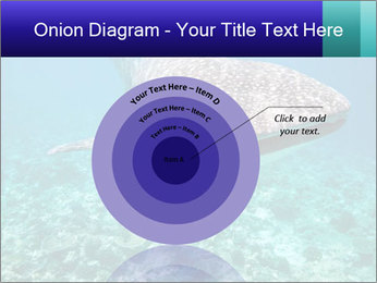 0000071931 PowerPoint Templates - Slide 61