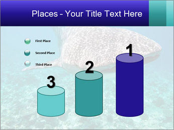 0000071931 PowerPoint Templates - Slide 65