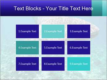 0000071931 PowerPoint Templates - Slide 68