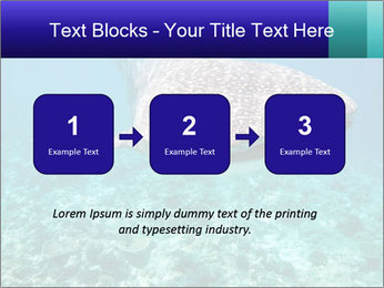 0000071931 PowerPoint Template - Slide 71