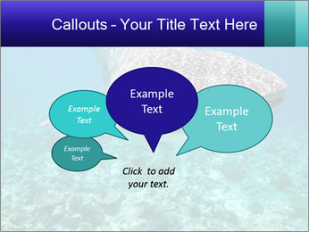 0000071931 PowerPoint Templates - Slide 73