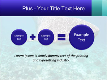 0000071931 PowerPoint Templates - Slide 75