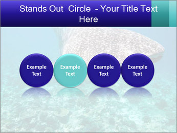 0000071931 PowerPoint Template - Slide 76