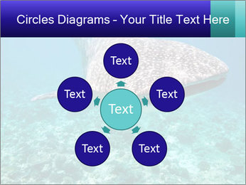 0000071931 PowerPoint Template - Slide 78
