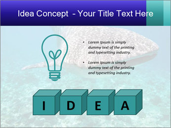 0000071931 PowerPoint Template - Slide 80