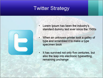 0000071931 PowerPoint Template - Slide 9