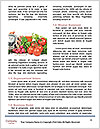 0000071949 Word Template - Page 4