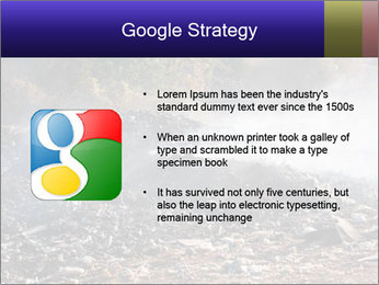 0000071952 PowerPoint Template - Slide 10