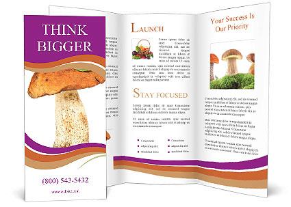 0000071959 Brochure Template