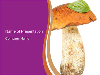 0000071959 PowerPoint Template