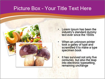 0000071959 PowerPoint Templates - Slide 20