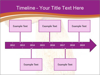 0000071959 PowerPoint Templates - Slide 28