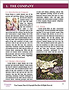 0000071973 Word Template - Page 3