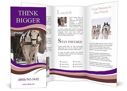 0000071974 Brochure Templates