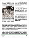 0000071979 Word Templates - Page 4