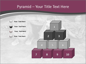 0000071980 PowerPoint Template - Slide 31