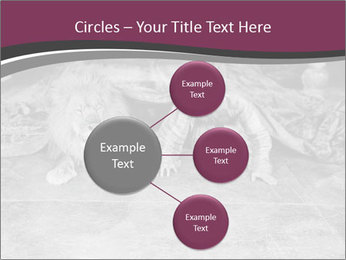 0000071980 PowerPoint Template - Slide 79
