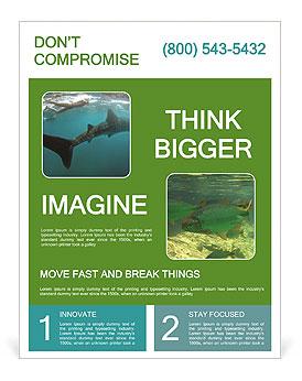 0000071981 Flyer Templates