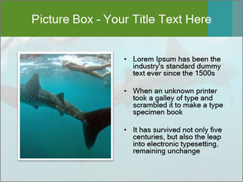 0000071981 PowerPoint Template - Slide 13