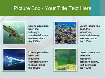 0000071981 PowerPoint Template - Slide 14
