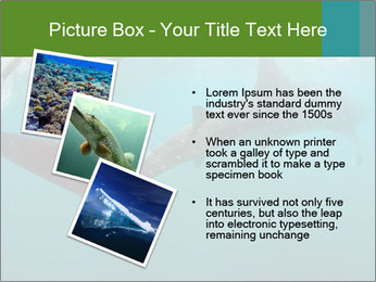 0000071981 PowerPoint Template - Slide 17