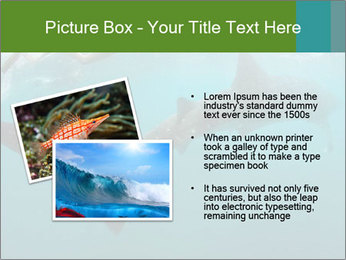 0000071981 PowerPoint Template - Slide 20