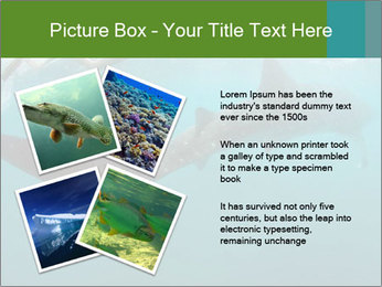 0000071981 PowerPoint Template - Slide 23