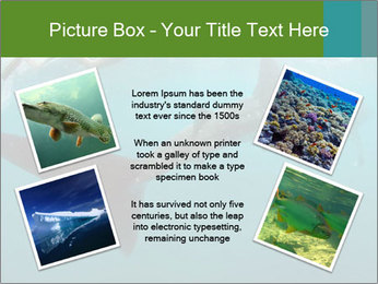 0000071981 PowerPoint Template - Slide 24