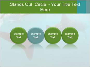 0000071981 PowerPoint Template - Slide 76