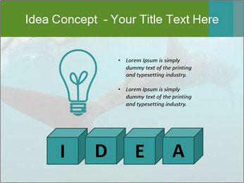 0000071981 PowerPoint Template - Slide 80