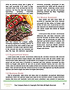 0000071991 Word Template - Page 4