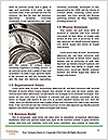 0000071997 Word Template - Page 4