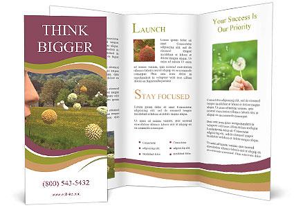 0000072002 Brochure Template