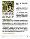 0000072002 Word Template - Page 4