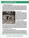0000072013 Word Template - Page 8