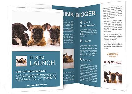 0000072026 Brochure Template