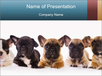 0000072026 PowerPoint Template - Slide 1
