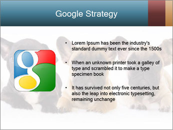 0000072026 PowerPoint Template - Slide 10